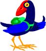 takeabreak Pukeko